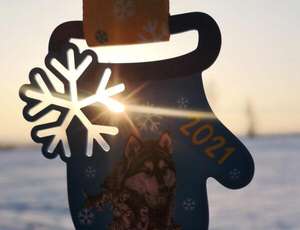 """28 февраля в Алматы прошли соревнования по ездовому спорту """"Рождественская Лига"""""""