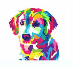 Генетика домашних животных. Химеры и мозаики